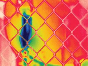 Hình ảnh tự động lấy nét tập trung vào hàng rào